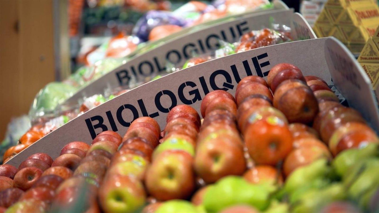 Un étalage de pommes biologiques dans une épicerie.