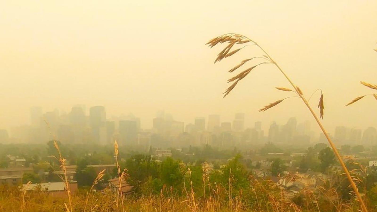 Vue sur une ville avec des bâtisses qu'on ne voit à peine en raison de la fumée.