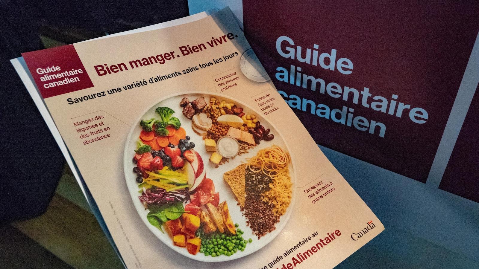 Photo d'une version papier du Guide alimentaire canadien dévoilé en janvier 2019.