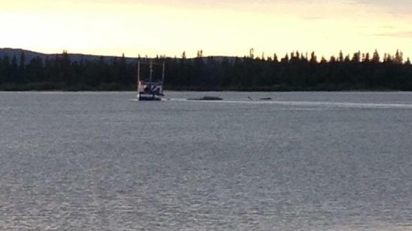L'hydravion renversé dans le port de Happy Valley-Goose Bay