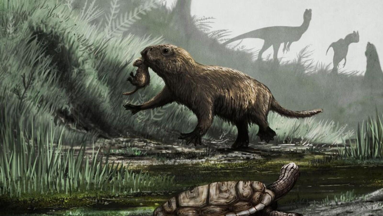 Représentation artistique de la vie d'un Kayentatherium, un mammifère semi-aquatique qui vivait à au Jurassique. À l'arrière apparaissent des Dilophosaurus, un prédateur redoutable de l'époque.
