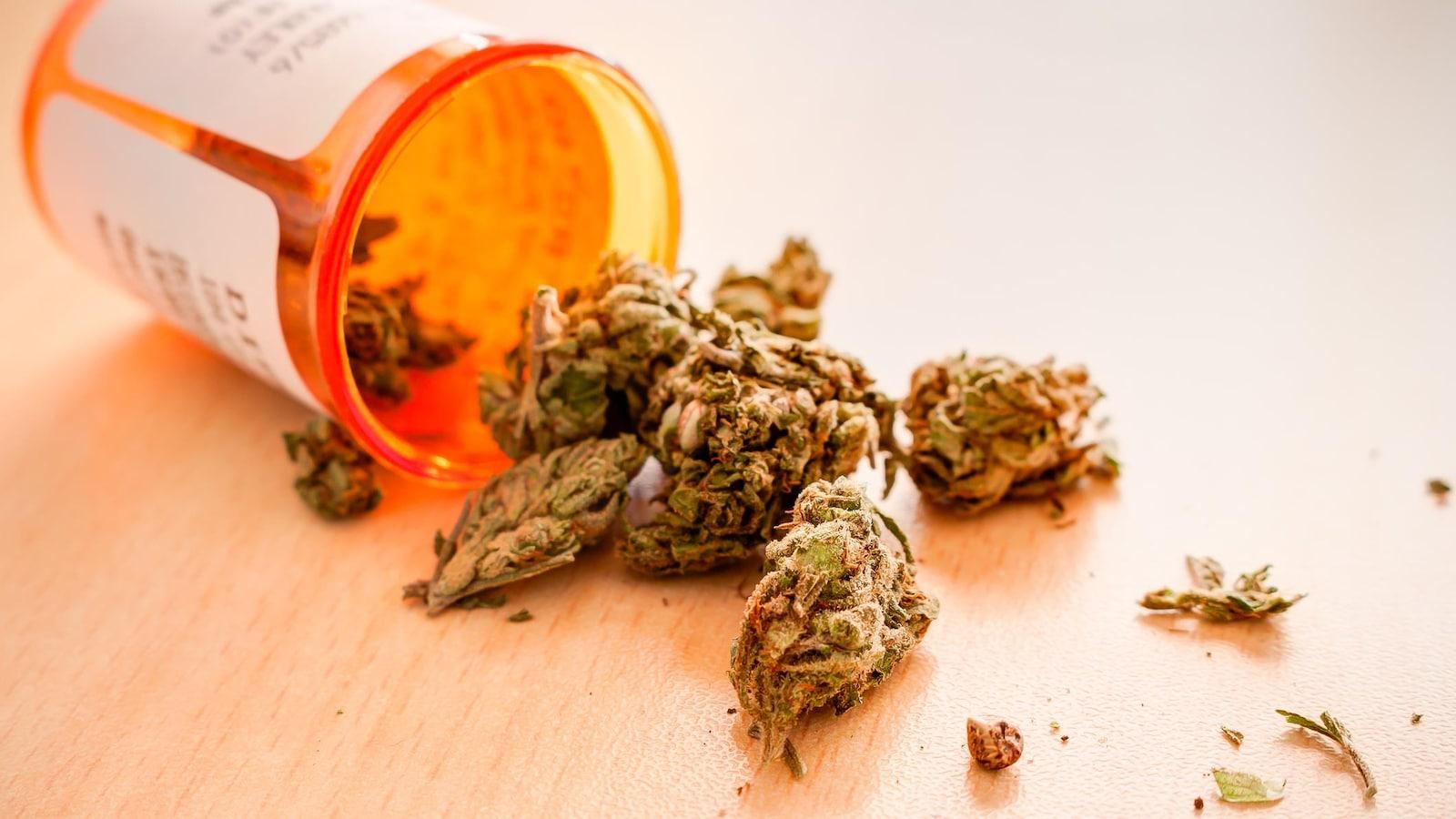 De la marijuana médicinale