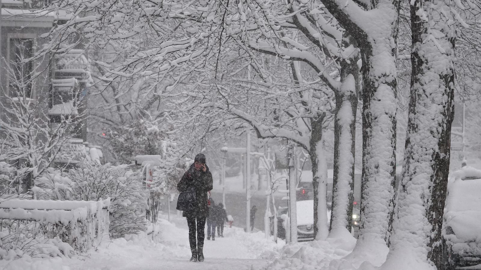 Une femme marche sur le trottoir, entourée d'arbres enneigés.