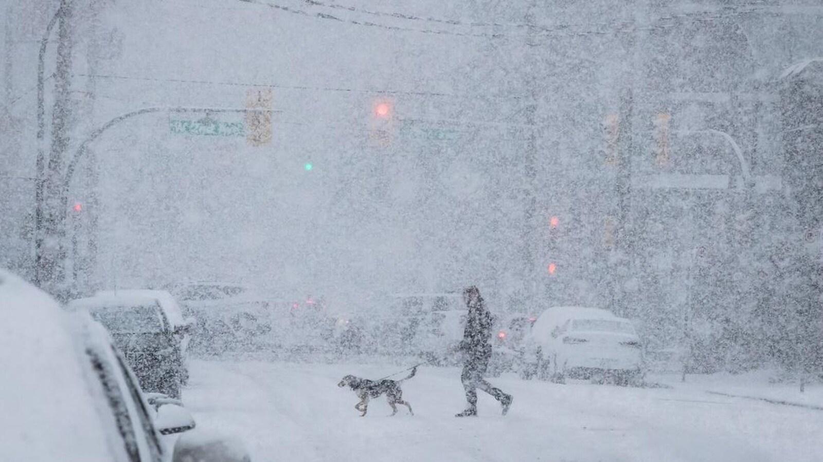 Un homme traverse une rue avec son chien dans une tempête de neige.