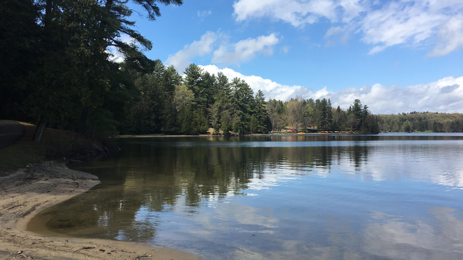 Une plage avec un lac et une forêt.