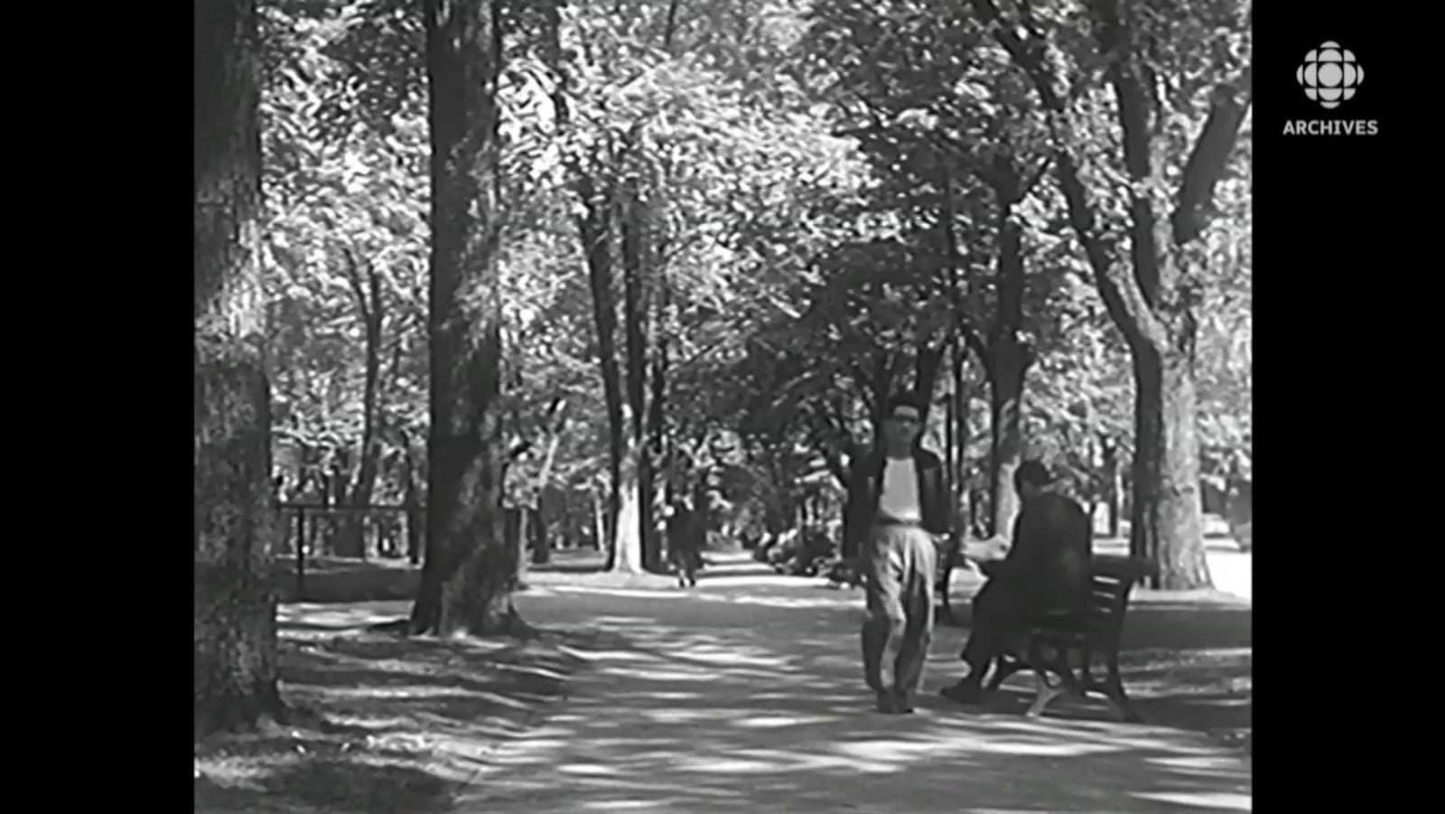 Un homme flâne dans un sentier du parc La Fontaine et circule près d'un autre qui lit son journal sur un banc.