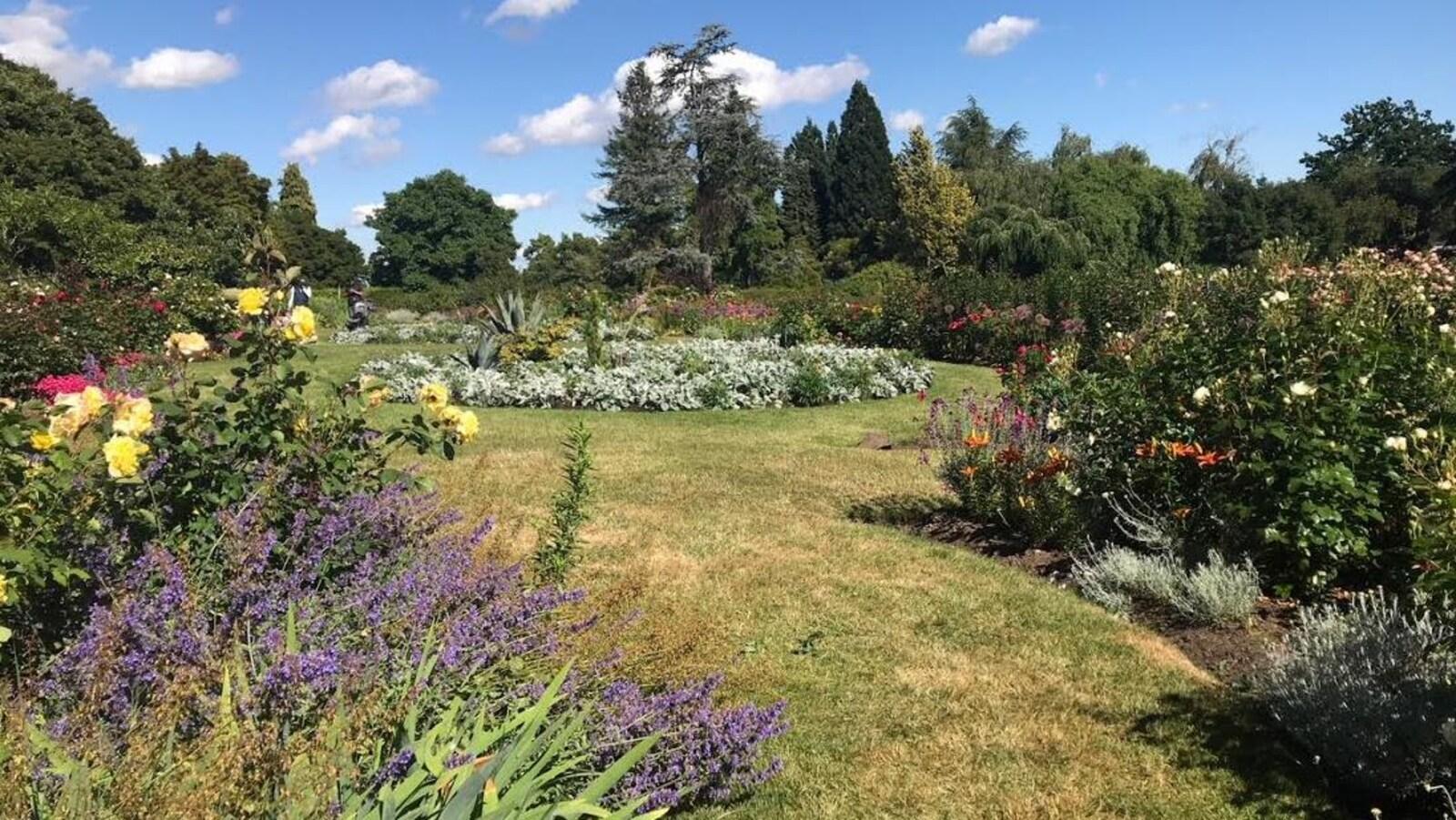 De nombreuses variétés de fleurs et de plantes dans un jardin public par une journée ensoleillée.