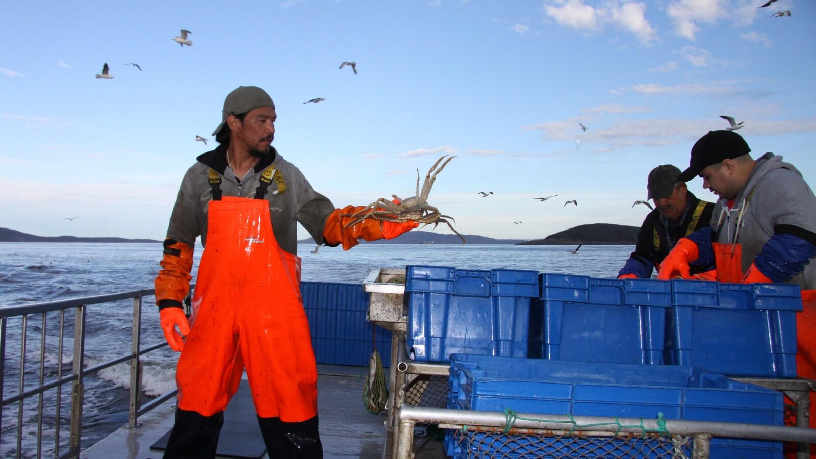 Pêche au crabe Uapan.