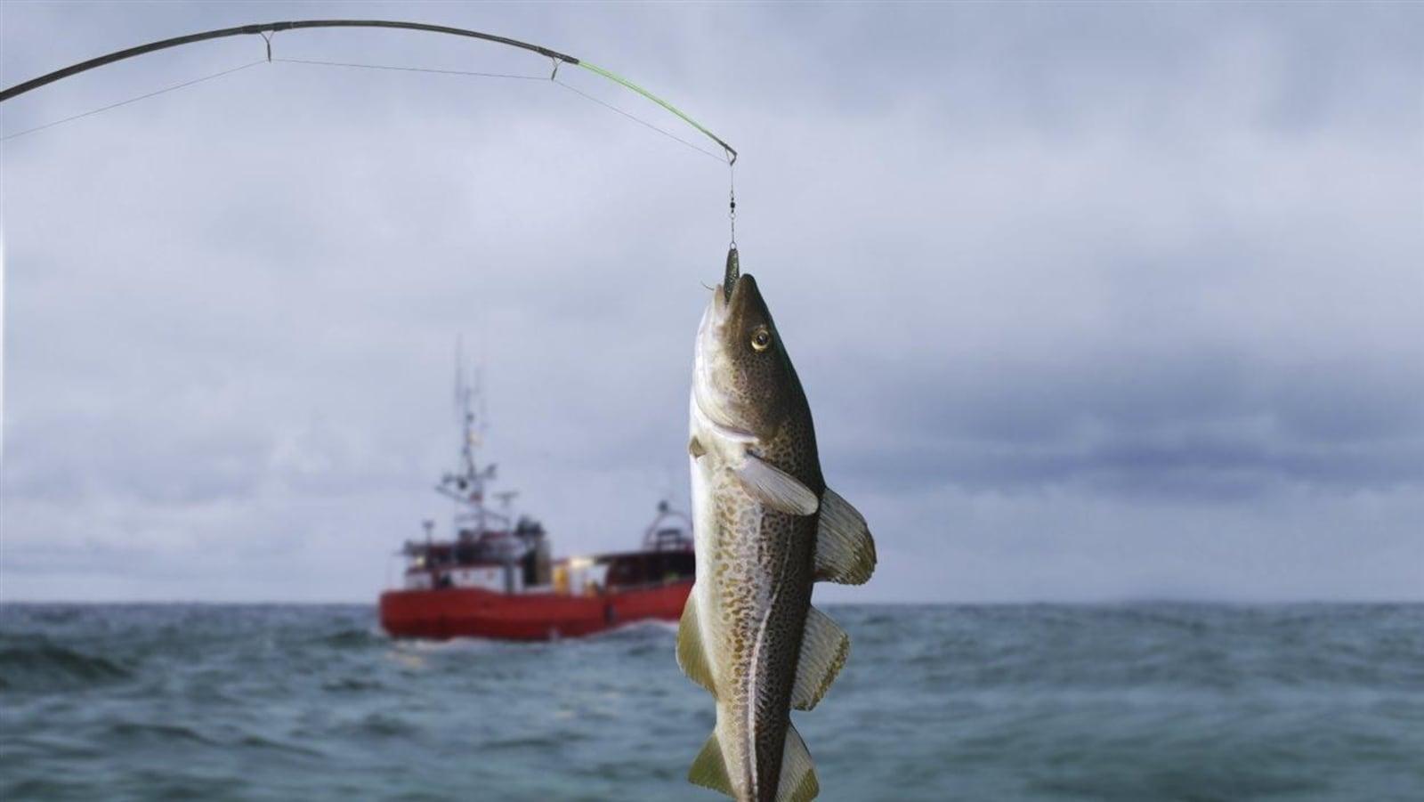 La pêche à la morue.