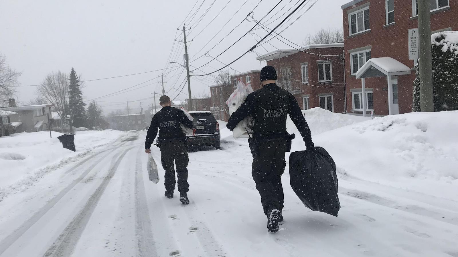 Des agents de la faune ont effectué des perquisitions à Sherbrooke.