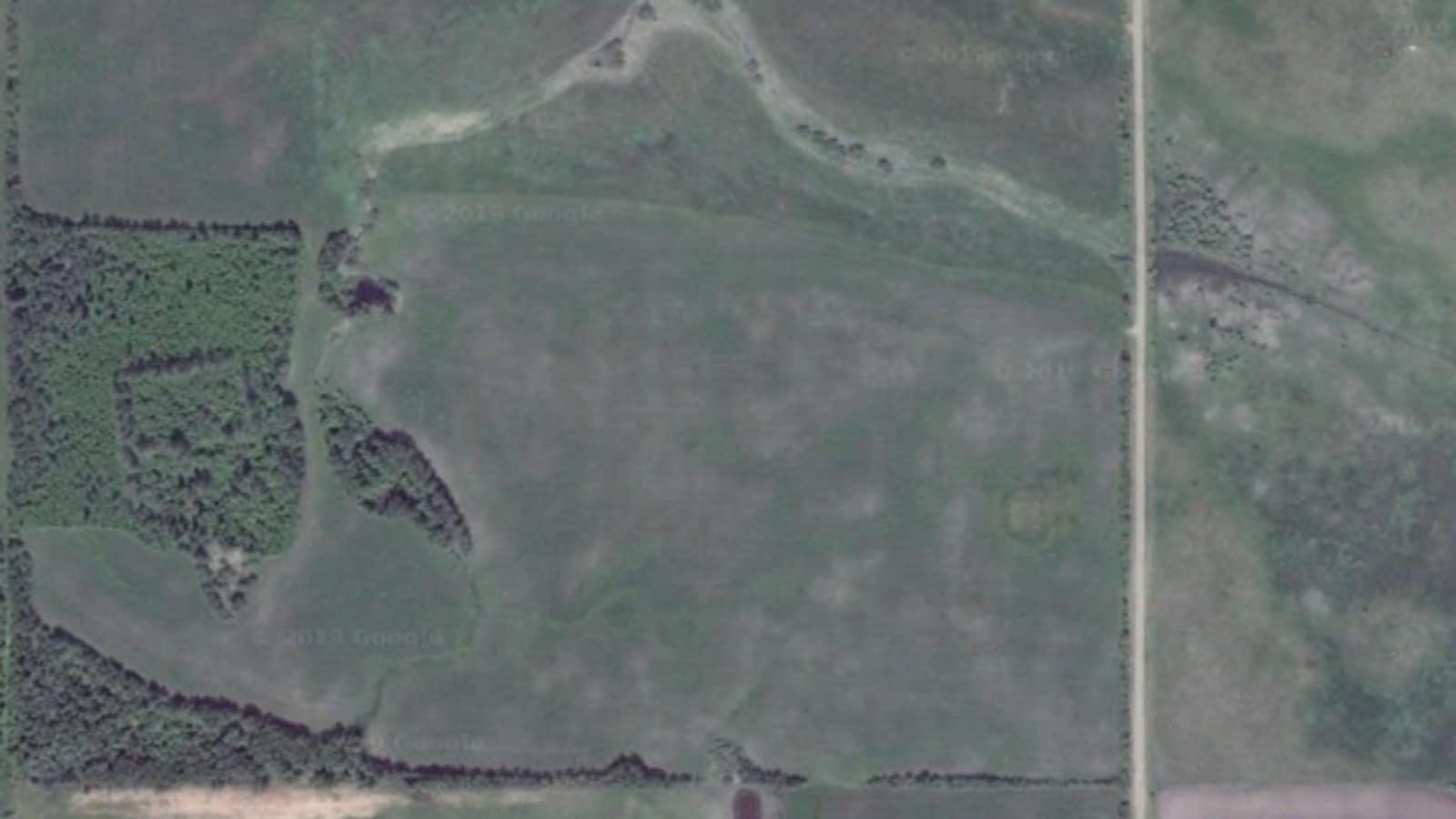 Une vue aérienne d'un carré d'arbres et d'un champ.
