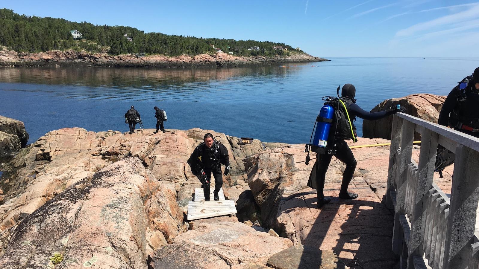 La baie des Anémones, aux Escoumins, est incontournable, selon de nombreux plongeurs québécois.