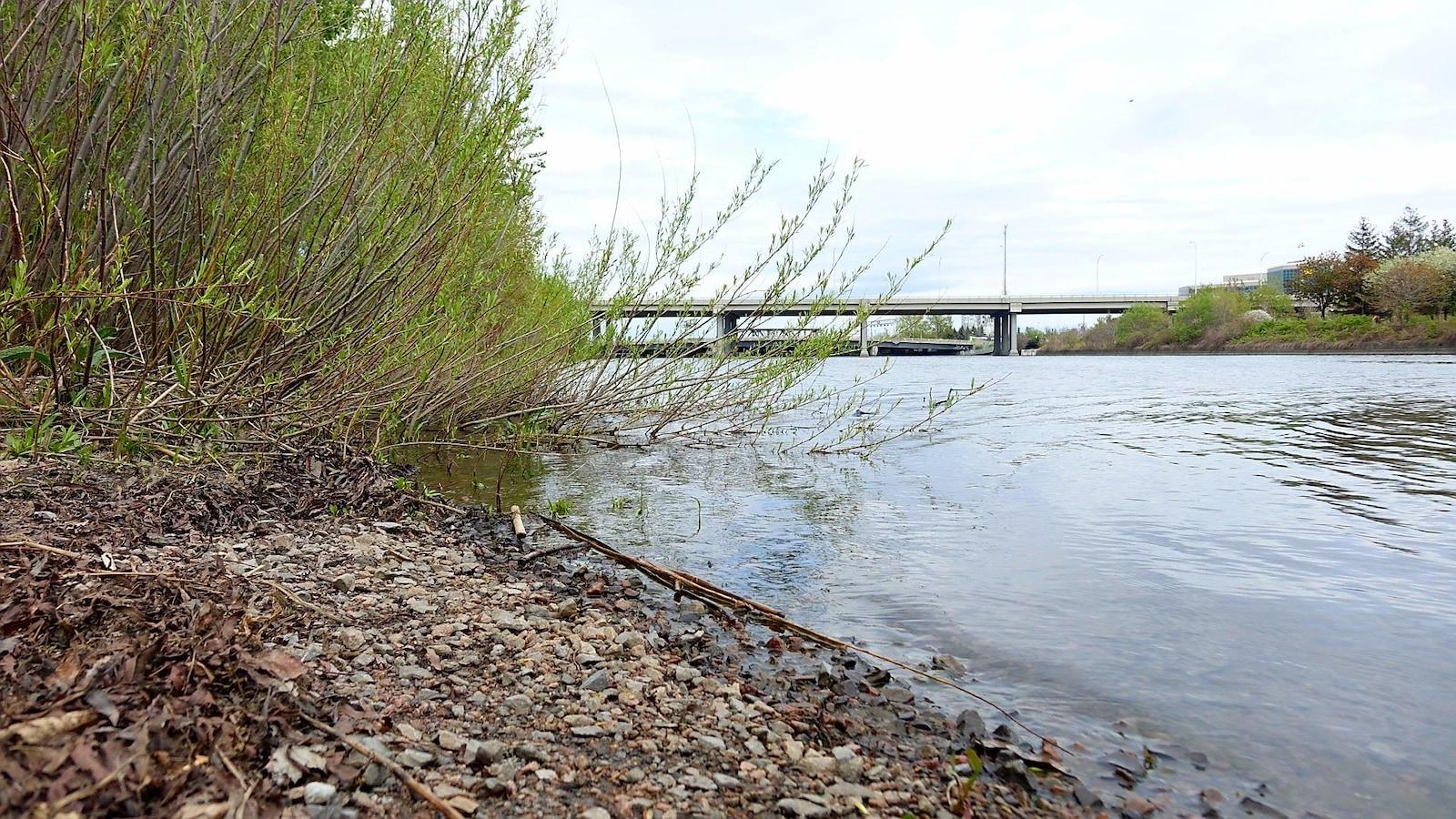 L'autoroute Dufferin-Montmorency vue d'une rive de la rivière Saint-Charles à Québec