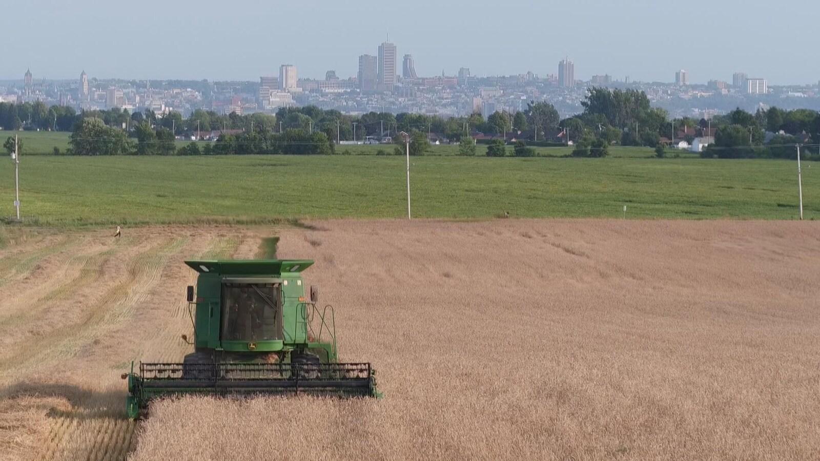 Une moissonneuse dans un champs avec en arrière plan la ville de Québec.