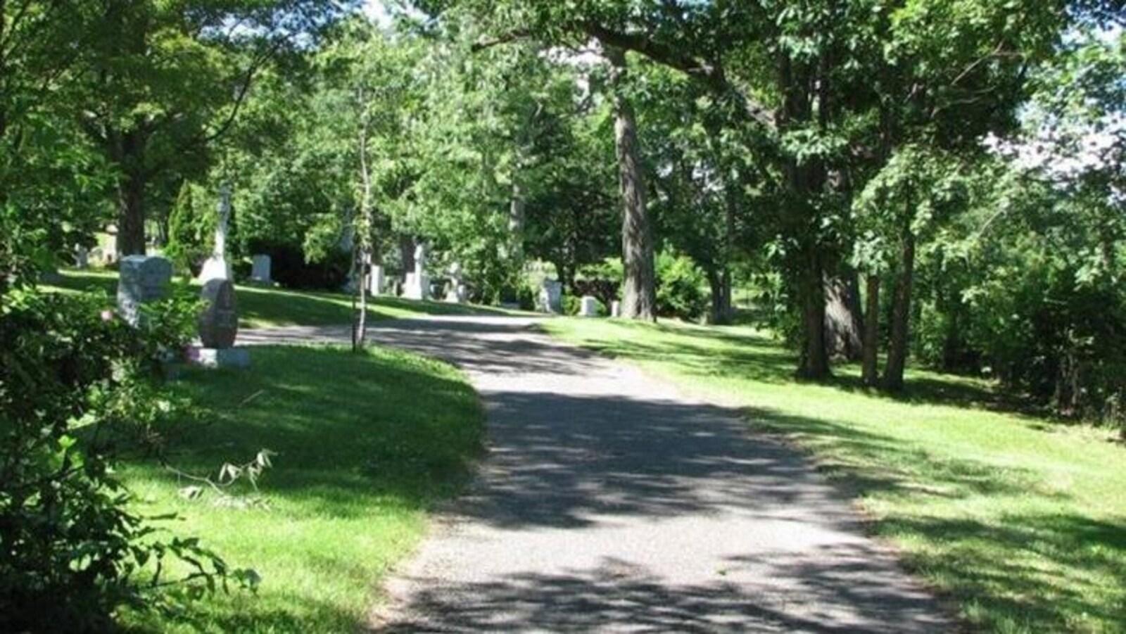 Sentier en sous-bois dans un cimetière.