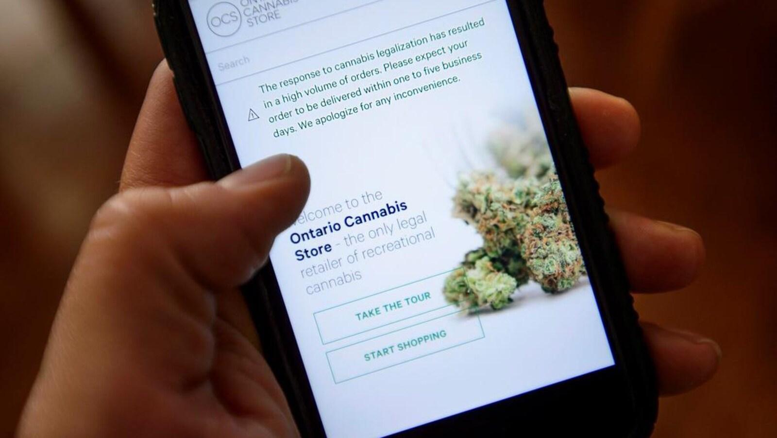 Photo d'une main qui tient un téléphone cellulaire où est affichée une image de cannabis.