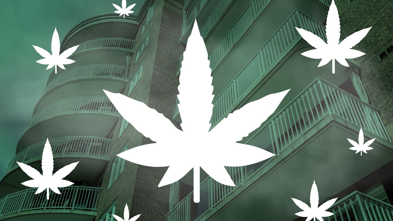 Superposition de feuilles de cannabis et d'une photo d'un immeuble à condos.