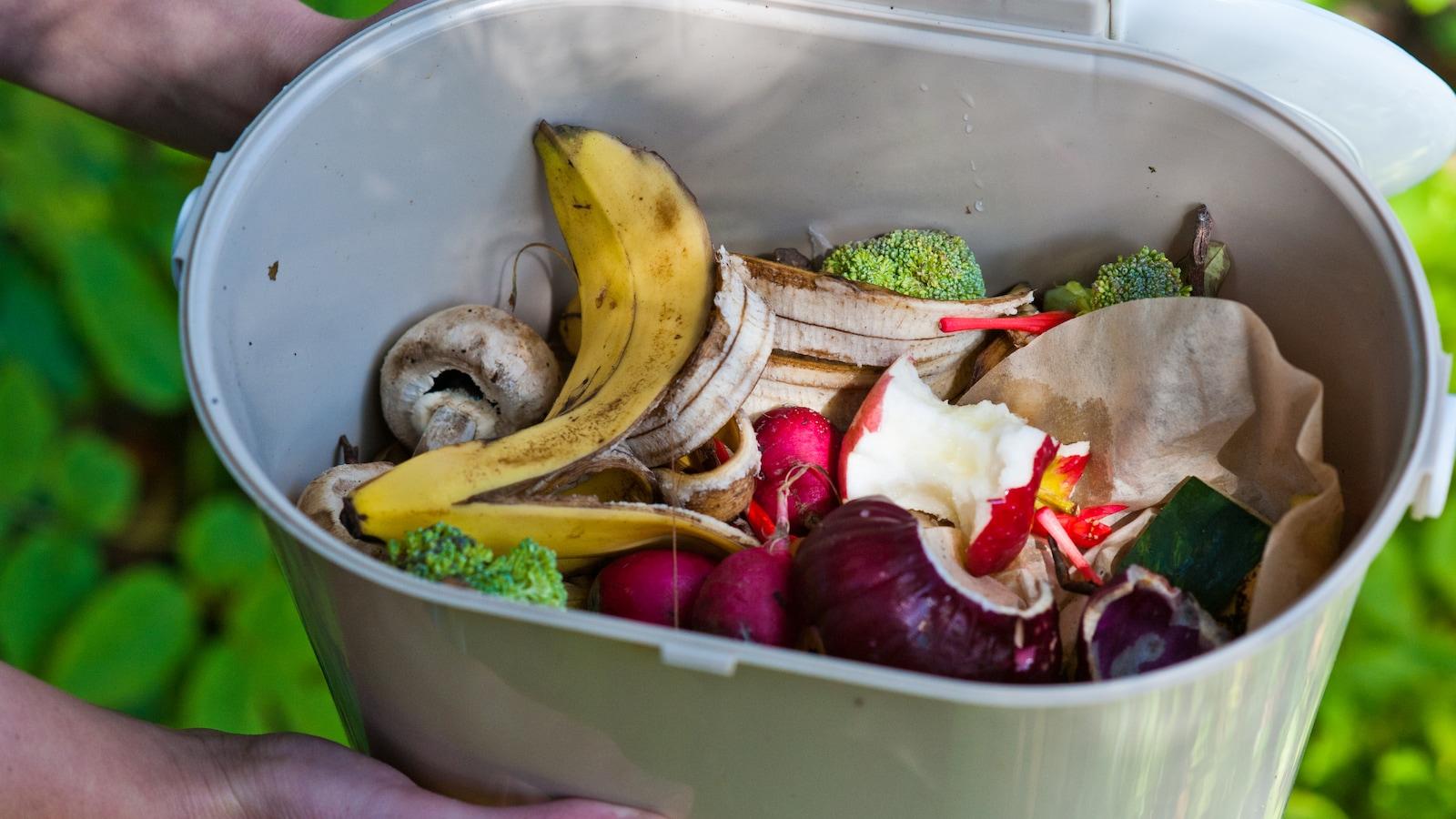 Bac de compostage domestique avec fruits et légumes