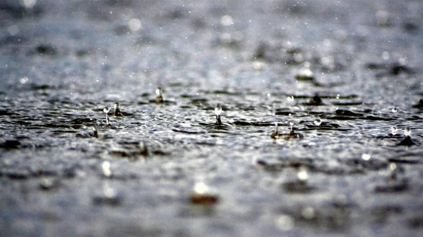 Des gouttes de pluie sur un sol trempé.