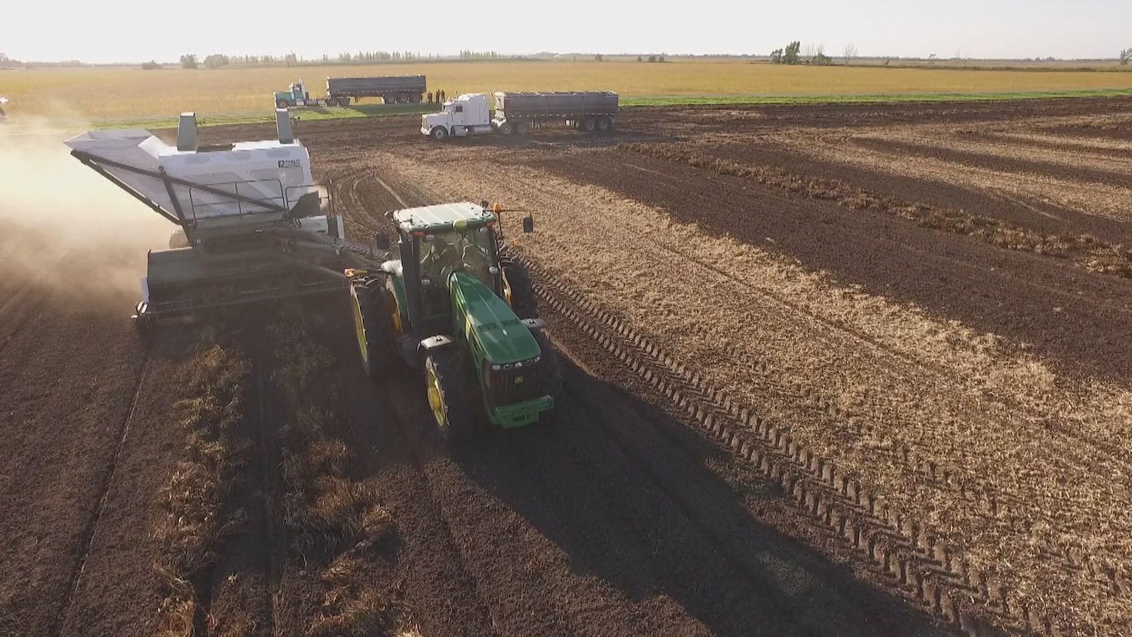 Un tracteur travaille la terre dans un grand champs agricole, avec deux autres camions en arrière-plan.