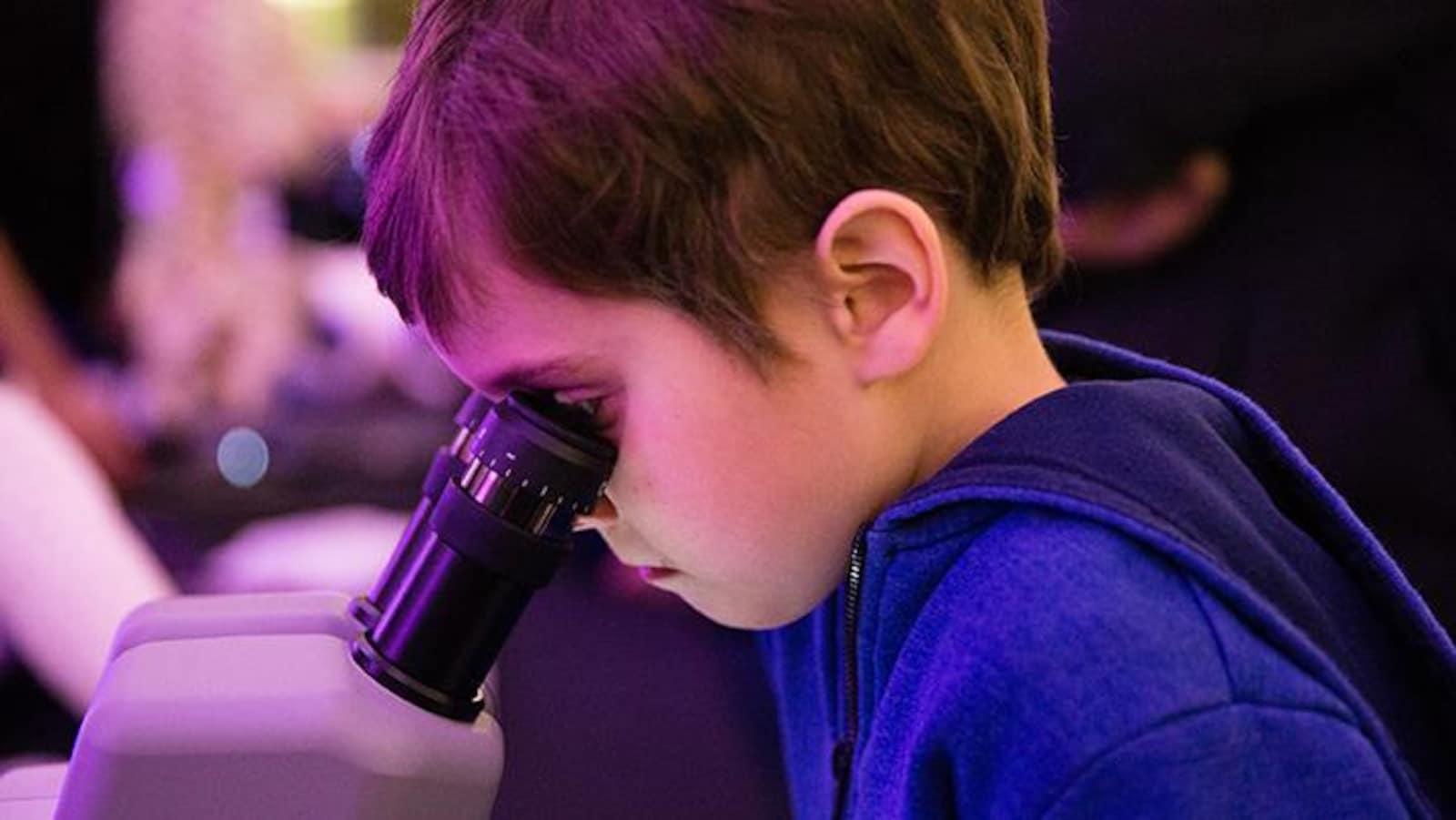 Il regarde dans un microscope