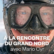 À la rencontre du grand Nord.