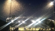 Un nuage d'éphémères autour de lampadaires dans un terrain de baseball