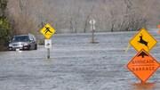 Des affiches de signalisation et une voiture prises par la montée des eaux.