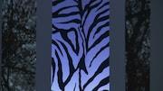 Sa troisième représente la peau du zèbre, les voisins de son exposition.