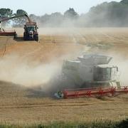 Des tracteurs labourent des terres agricoles.