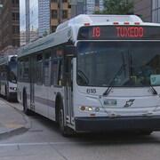 Un autobus de Winnipeg Transit.
