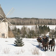 Des chevaux traînent des passagers dans leur calèche sur le terrain du Baluchon devant un moulin à vent.