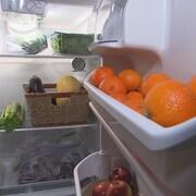 Le contenu d'un frigo communautaire : il est rempli de fruits et légumes.