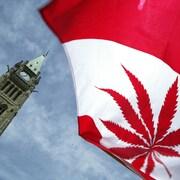 La feuille d'érable du drapeau canadien est remplacée par un plant de cannabis, avec en arrière-plan l'édifice principal du gouvernement fédéral.