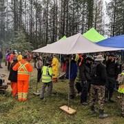 Des équipes de recherche et de sauvetage et des bénévoles dans un terrain boisé par temps gris.