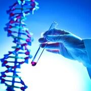 Une personne qui manipule une éprouvette contenant un liquide effectue un test d'ADN.