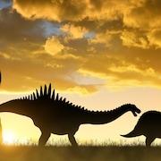 Des silhouettes de dinosaures dans le soleil couchant