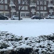 Des voitures stationnées dans un paysage d'hiver