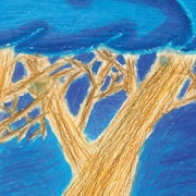 Page couverture du conte jeunesse L'arbre nommé Heigib