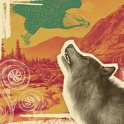 Illustration style montage avec fond de montage et rivière, louve, aigle et têtes de violon..