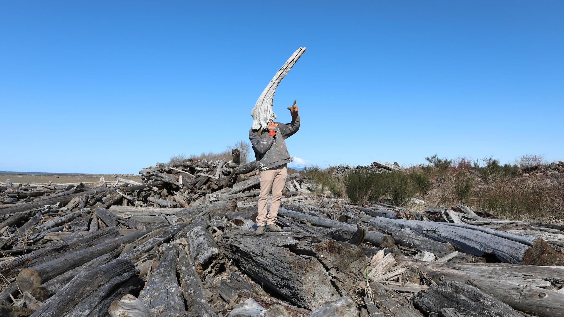 Maurice Sherwood sur une plage remplie de bois flotté tiens un morceau de bois devant son visage.