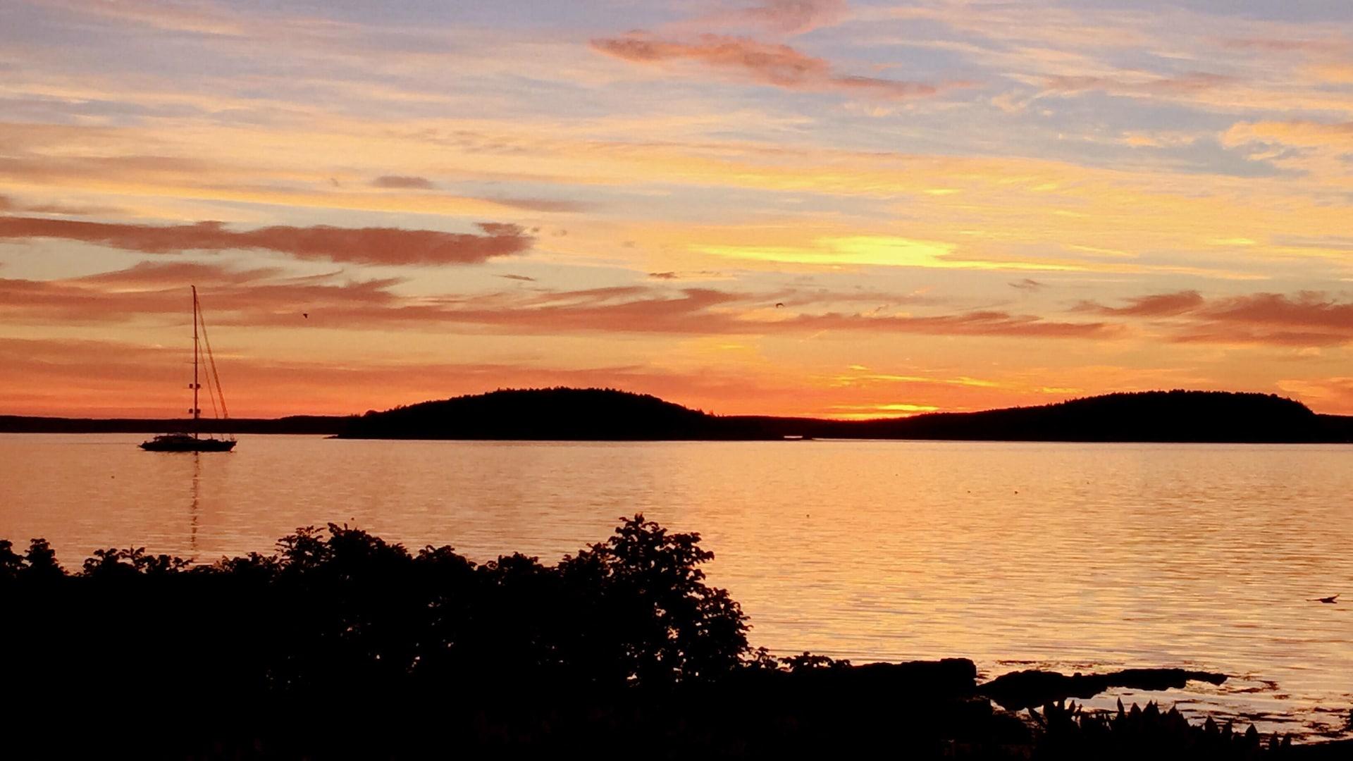 Photo d'un lever de soleil à Bar Harbor. Le ciel est teinté de rose, les feuillages au premier plan sont noirs, il y a un bateau à voile sur l'eau.