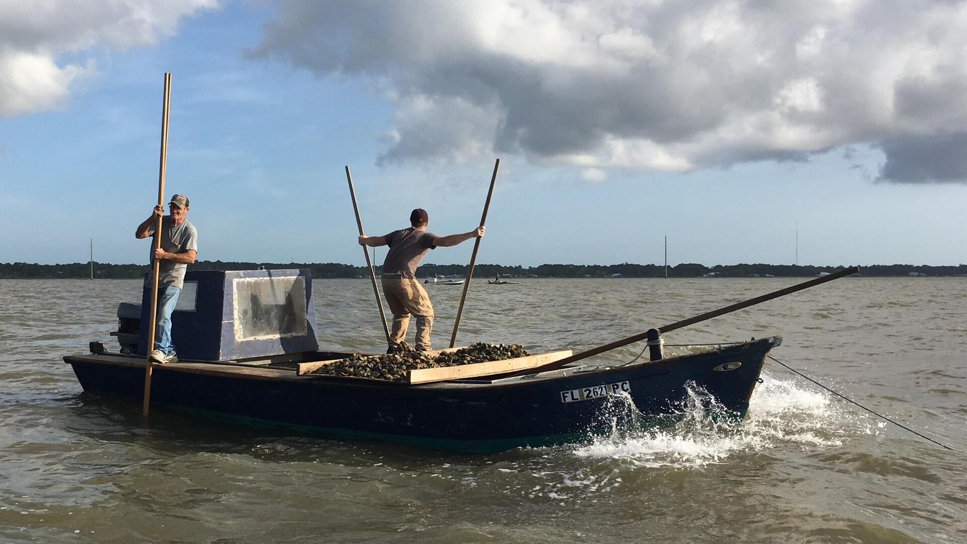 Des pêcheurs d'huîtres à bord de leur bateau.
