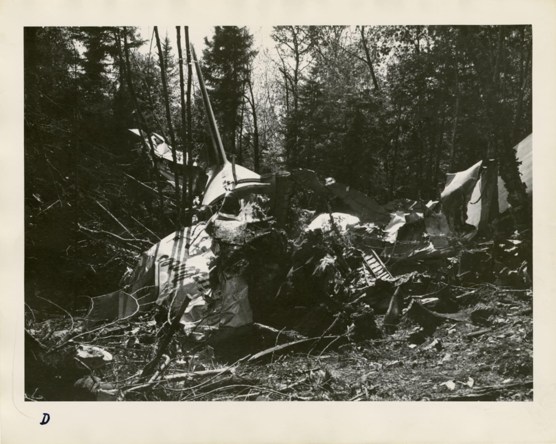 Photo en noir et blanc des débris de l'avion dans la forêt