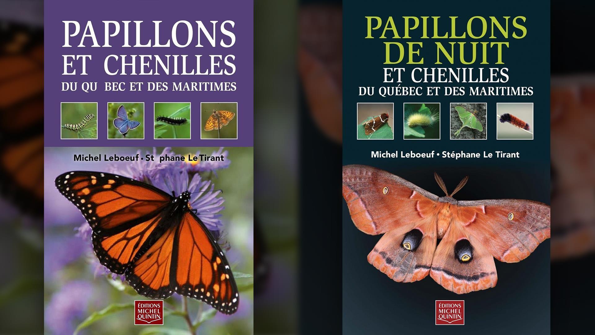 Papillons et chenilles et Papillons de nuit et chenilles du Québec et des maritimes.