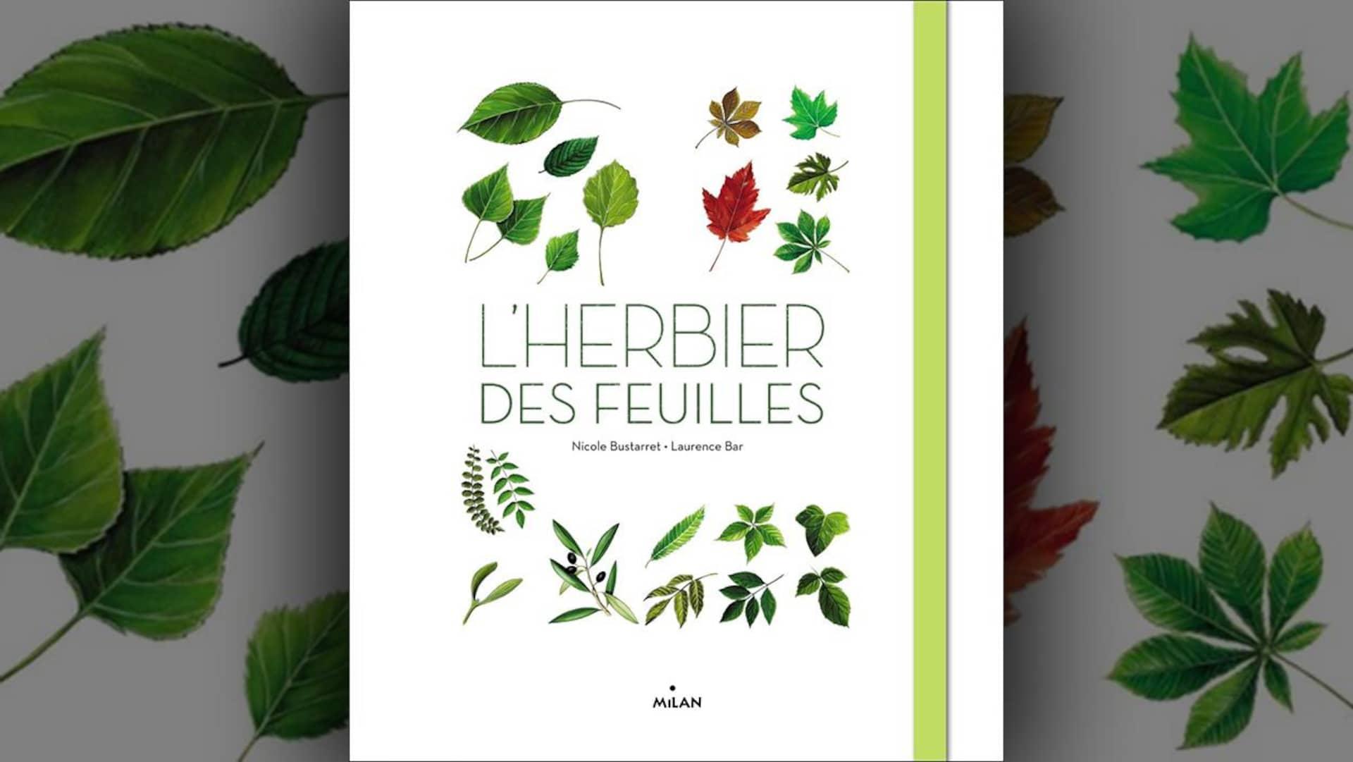 Sept Livres Pour Expliquer Les Saisons Aux Enfants