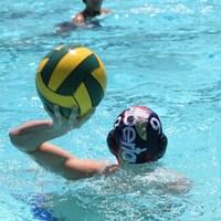 Un joueur de water-polo s'apprête à lancer un ballon dans une piscine.