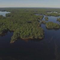 Une forêt et des lacs vus du ciel.