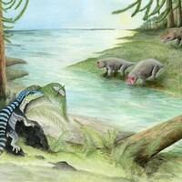 Une représentation d'artiste où l'Antarctanax Shackletoni est vue près d'une rivière, dans une forêt.