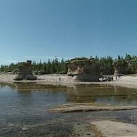 Une plage avec d'imposants monolithes de calcaires et bordée par des conifères.